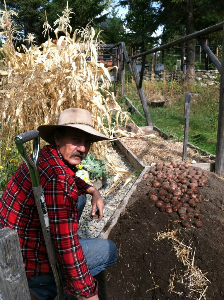 Sept 25, 2014 Potato harvest
