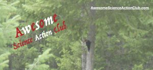 AwesomeScienceActionClubLogo