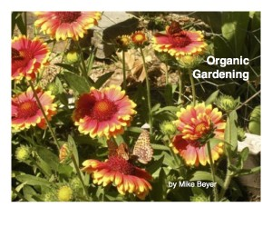 Download our ebook of organic gardening basics