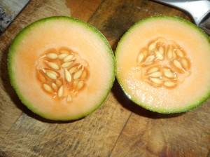 organic grown cantaloupe