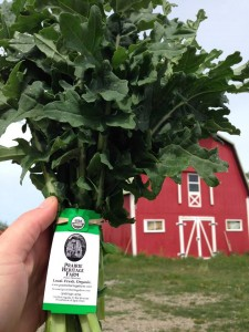 Prairie Heritage Farm Kale  and Red Barn