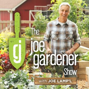 Joe Gardener Show with Joe Lamp'l