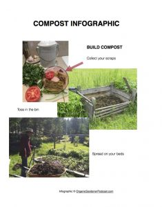 Simple Composting Infographic
